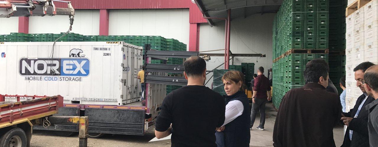 Manisa Kirazı Norex Cold Store ile Çin Pazarına giriş yapacak